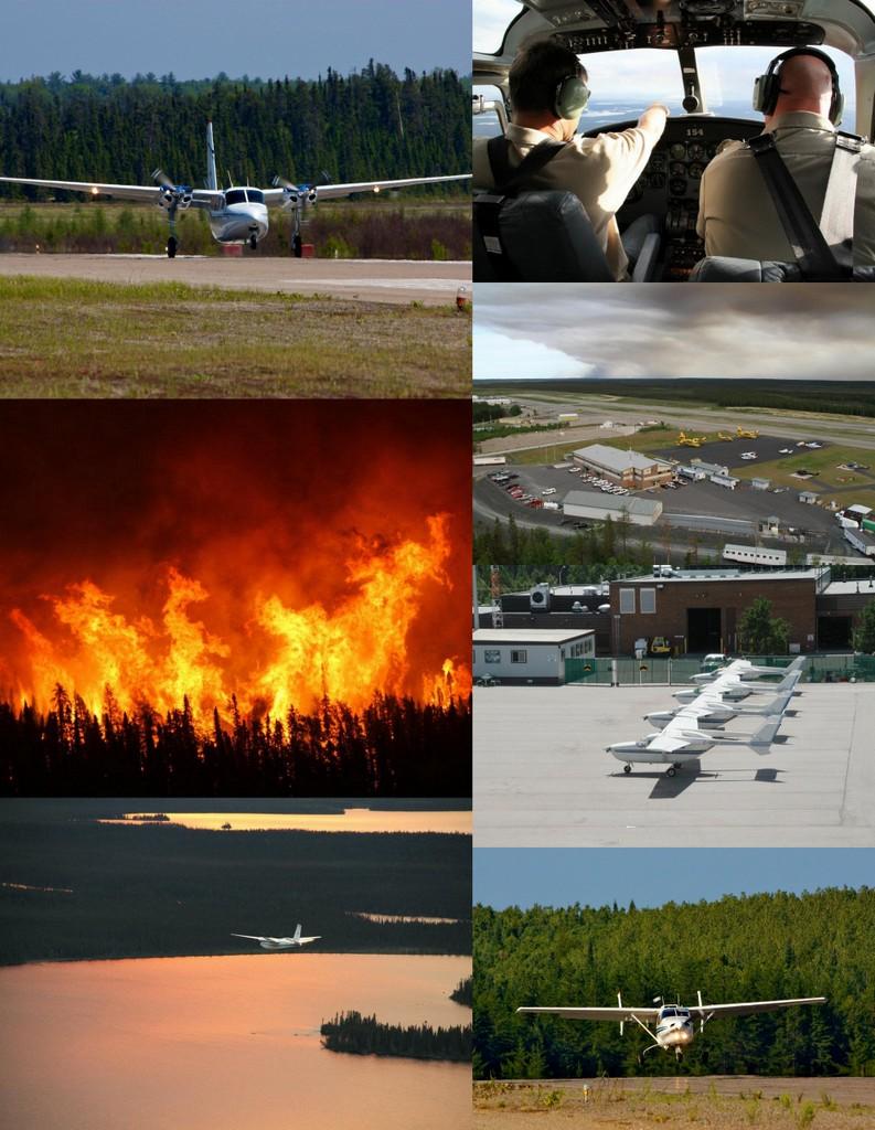 fire management services